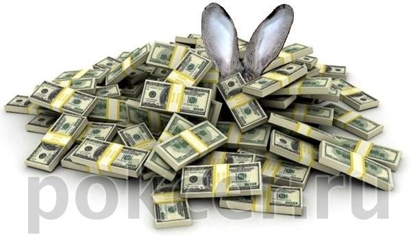 Разбогатеть на выращивании кроликов