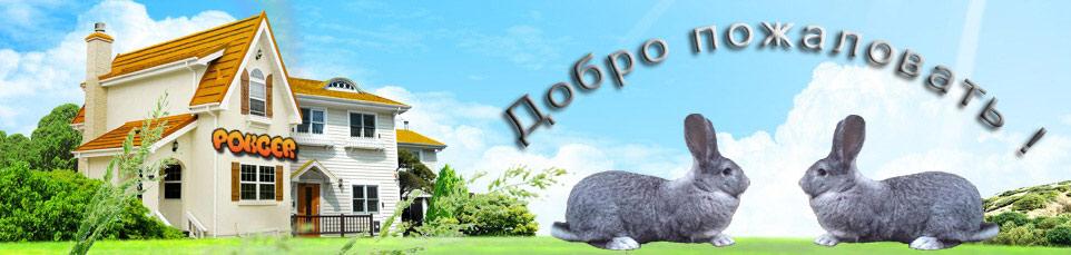 энциклопедия кроликовода